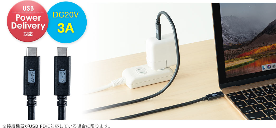 USB PowerDelivery対応 DC20V 3A
